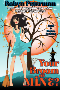 Your Broom or Mine cover